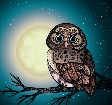Cartoon uil zittend op een tak in de nachtelijke sterrenhemel met volle maan