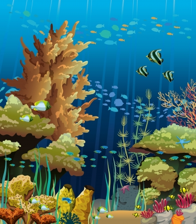Nature vector seascape with underwater creatures and coral reef Vectores