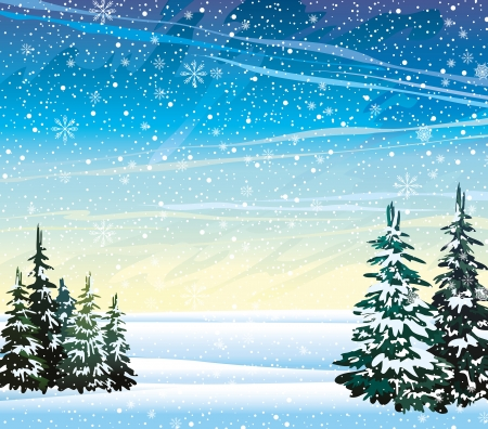 winter scenes: Winter nature landscape with firs and snowfall