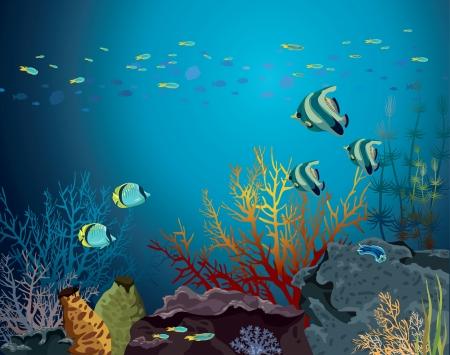 peces caricatura: Arrecifes de coral con criaturas uderwater y banco de peces en un mar azul