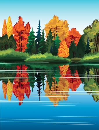 Autumn nature landscape with colored forest and lake. Vector