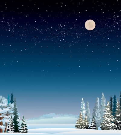 Winter night landscape with snow covered trees and starry sky.