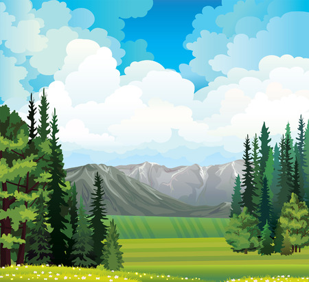 flowering field: Green rural field with forest and gray mountains on a cloudy blue sky.