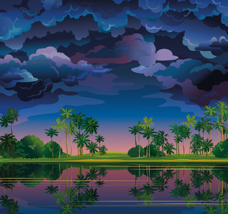 stormy clouds: Group of stormy clouds and coconat trees near the lake on a sanset sky. Nature tropical landscape.