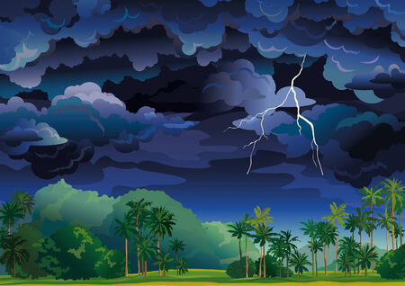windstorm: tropical landscape  Stormy sky with lightning and coconut palms  Illustration