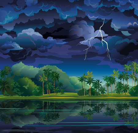 stormy: Stormy clouds with lightning and coconut palms near the lake  Nature tropical landscape