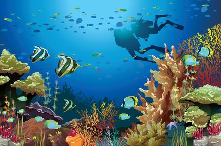 수중 생물과 두 스쿠버 다이버와 산호초 일러스트