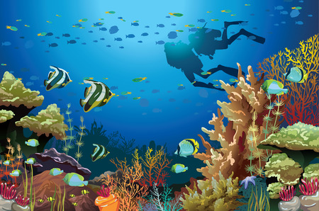 Coral reef with underwater creatures and two scuba divers