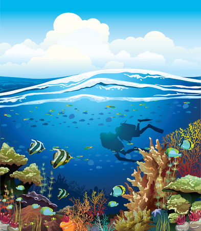 Coral reef with underwater creatures and two scuba divers under the blue sky