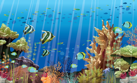 Coral reef with sea creatures  Underwater nature  Vector