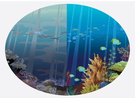 dangerous reef: Illustration of two underwater life - dirty and clean sea  Global pollution of the ocean
