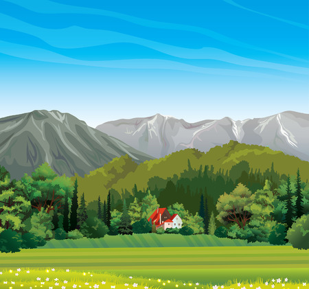 Green forest and house with red roof on a blue sky background  Nature vector landscape