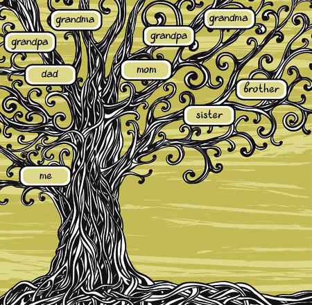 arbol genealógico: Árbol genealógico - Árbol de roble viejo en un fondo marrón.