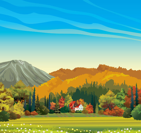 fall trees: Nature autumn landscape - orange forest and house with red roof on a blue sky background. Illustration
