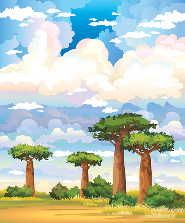 baobab: Green baobabs and yellow grass on a blue sky with group of clouds. Natural landscape. Illustration