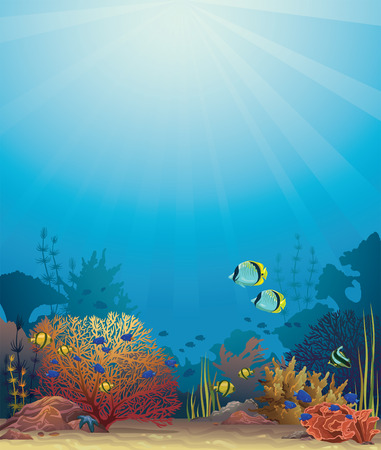 underwater light: Coral reef with colored fish on a blue sea background