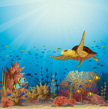 Big yellow turtle swimming over the coral reef in a blue ocean