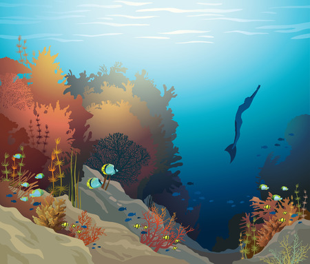 free diver: Coral reef with underwater creatures and silhouette of free diver on a blue sea. Vector ocean illustration. Illustration