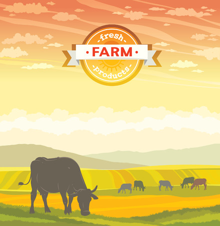 Silhouette of cow and rural landscape on a sunset sky. Vector of fresh farm products. Çizim