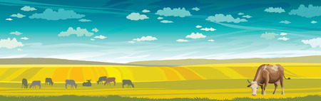 rural landscape: Rural summer landscape with cows and green meadow on a blue sky. Vector nature illustration.