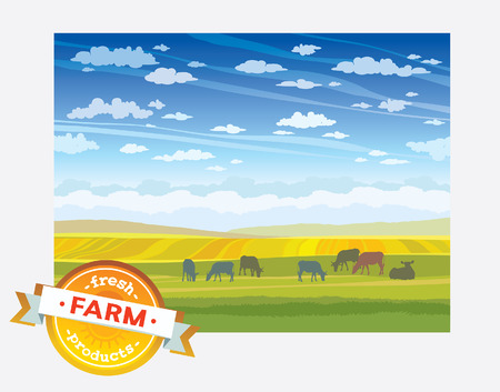 landscape nature: Fresh farm products. Herd of cows in green field. Vector rural nature landscape.