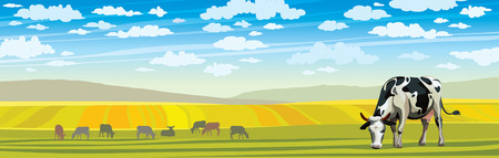 Summer rural landscape with cow and green meadow on a blue cloudy sky. Illustration