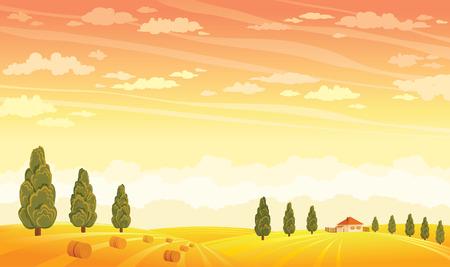 Sunset landscape vector: Mùa hè phong cảnh nông thôn với lĩnh vực vàng và cây xanh trên nền hoàng hôn trên bầu trời. Vector chất minh họa. Hình minh hoạ