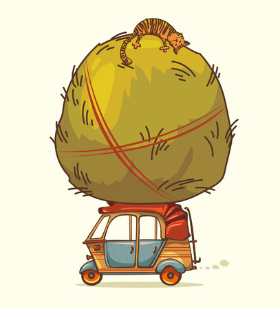 auto rickshaw: auto rickshaw and haystack with sleeping cat Illustration