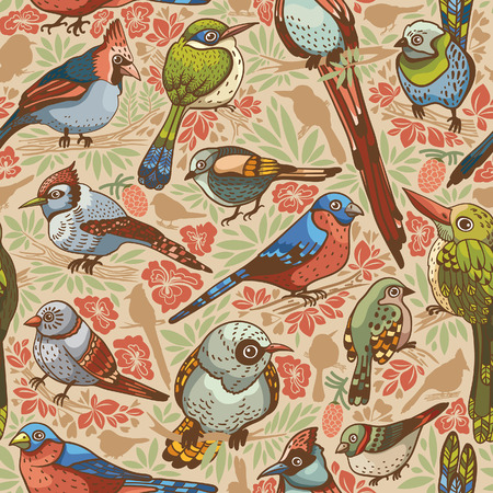oiseau dessin: Seamless avec des oiseaux et des fleurs colorées.