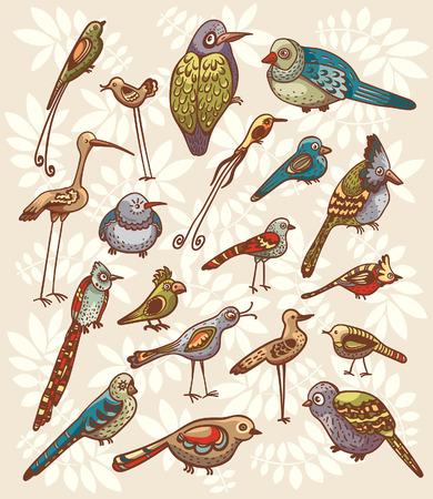 Vector set of cartoon funny birds. Childish illustration. 向量圖像