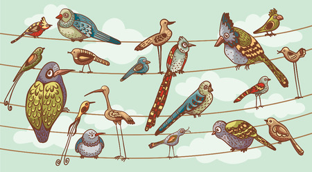 cute animals: Funny cartoon birds sitting on a wire like a family. Set of childish birds.