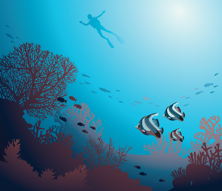 seascape: Underwater illustration - silhouette of diver and coral reef with school of fish. Vector seascape image.