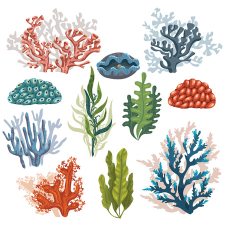 Set of cartoon underwater plants and creatures. Vector isolated corals and algaes.