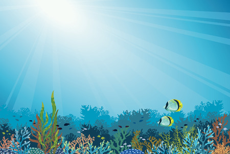 seascape: Underwater vector illustration - colorful coral reef with school of fish and two butterfly-fish on a blue sea background. Seascape image.