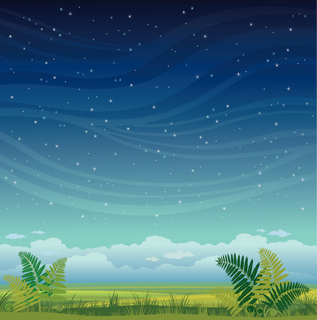 Nature landscape - grass with green fern on a night starry sky. Summer illustration.