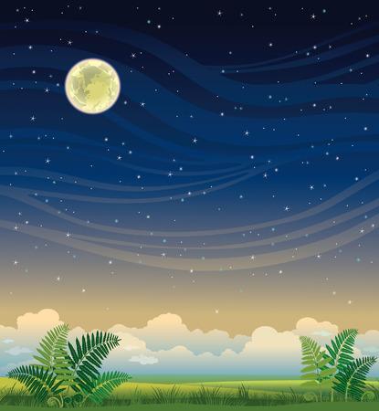 noche y luna: paisaje de verano - hierba verde y helechos en un cielo nocturno estrellado. Ilustración de la naturaleza. Vectores