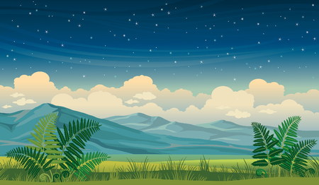 cloudy night sky: night summer landscape with green grass, fern and mountains on a starry sky background. Illustration