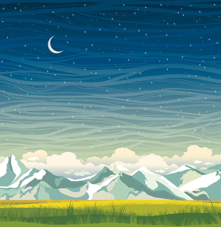 cloudy night sky: Night landscape with mountains and green grass on a starry sky background. Summer vector illustration. Illustration