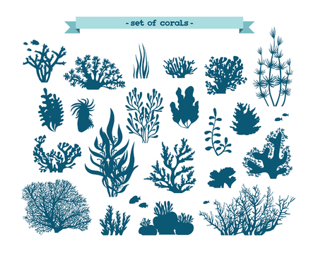 Underwater set - silhouette of corals and algaes on a white background. Çizim