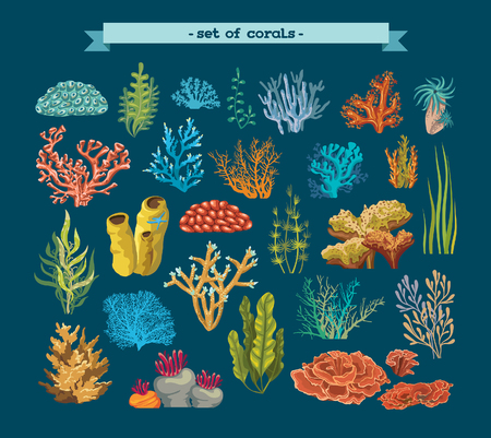 Set of colorful corals and algaes on a blue background. Natural underwater vector illustration.