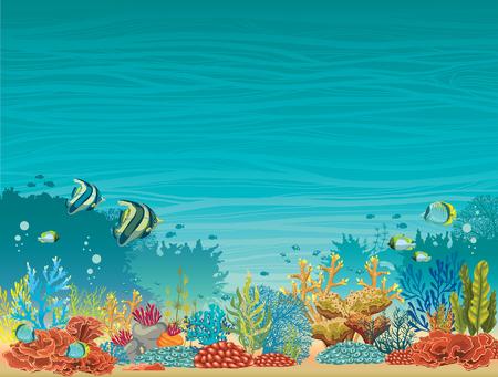 peces caricatura: Bajo el agua paisaje marino - colorido arrecife de coral con peces sobre un fondo azul. ilustración vectorial tropical natural. Vectores
