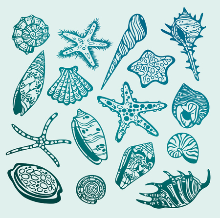 creature: Set of graphic underwater creature - seashells and starfishes. Vector illustration. Illustration