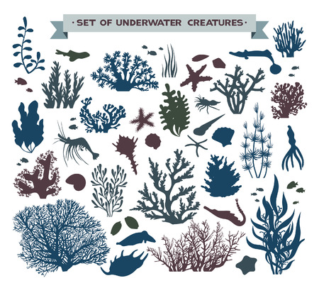 set of underwater sea creatures - coral reef, fish, seashells and starfish.