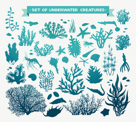oceano: conjunto de animales marinos - coral, peces, camarones, conchas y estrellas de mar. criaturas del océano bajo el agua sobre un fondo blanco. Vectores