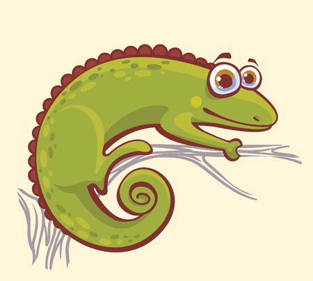 animal eyes: Funny green chameleon with big eyes sitting on a branch. Vector illustration with cartoon animal.