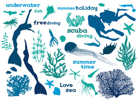 free diver: Vector illustration with silhouette of ocean elements on a white background.