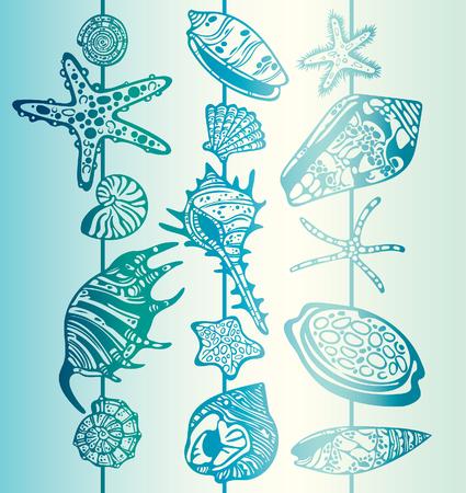 cockleshell: Vector set of seashells and starfish. Summer tropical illustration.