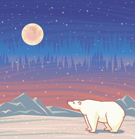 polar lights: Cartoon polar bear and northern lights on a starry night sky. Vector arctic illustration.