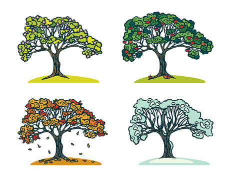 snow tree: Vector illustration with four season in nature. Graphic tree in spring, summer, autumn and winter. Illustration
