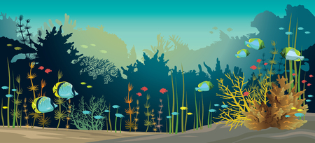 underwater fishes: Colorful vector illustration with coral reef and fishes. Underwater tropical sea life. Illustration